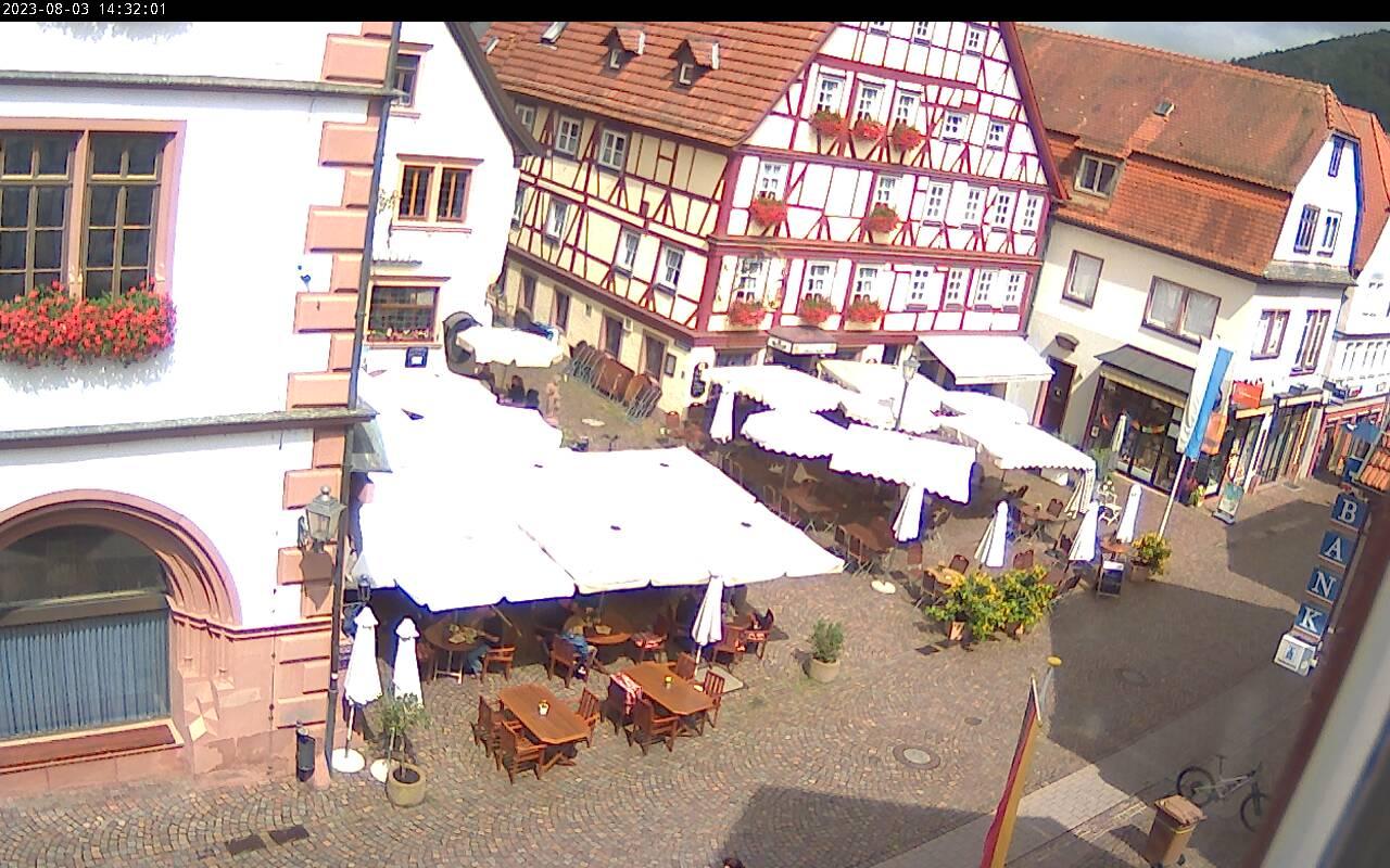 Dettagli webcam Lohr